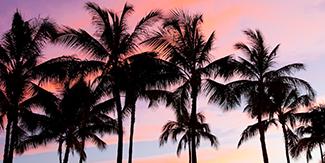 P.M.A.トライアングルが手掛けるハワイに関するプロジェクトをご紹介